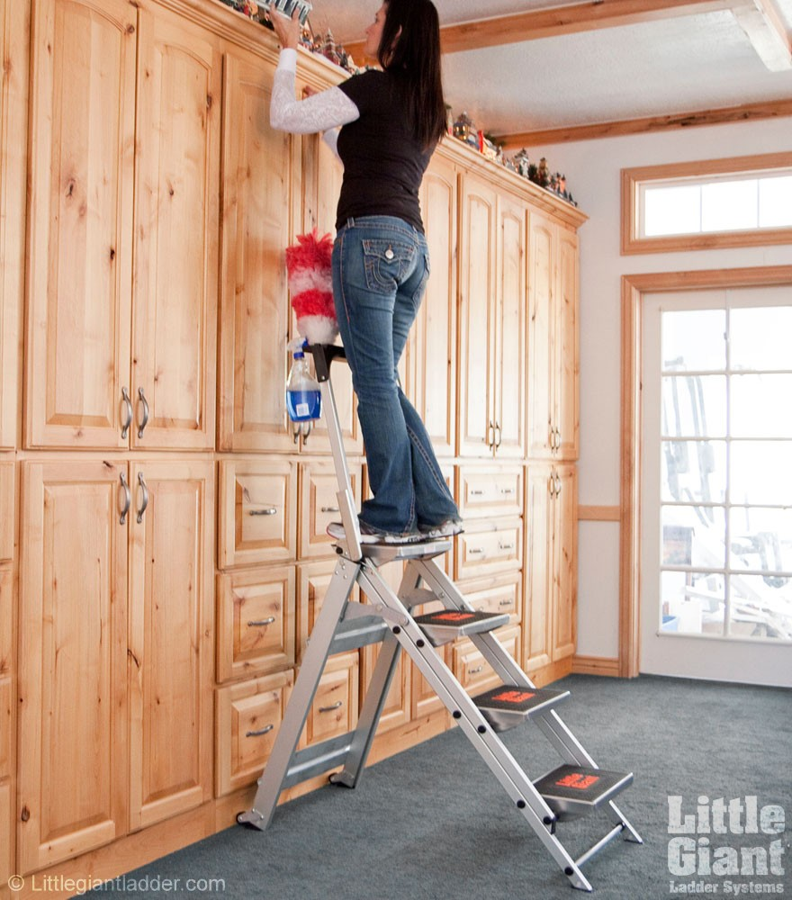 Little Giant Safety Steps Ladders Ie